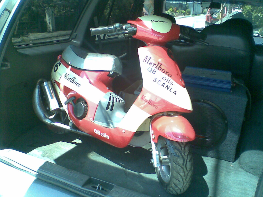 pocket bike (1)