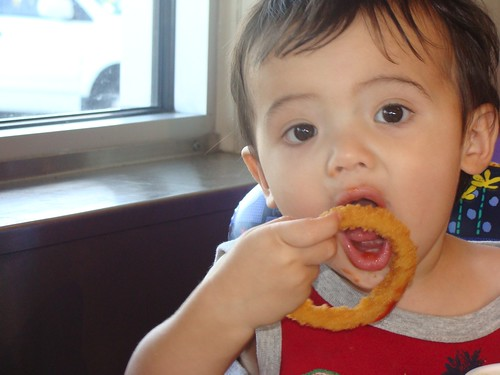 Benji trying to eat onion rings