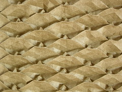 Pinecone tessellation, close-up