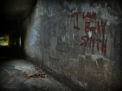 Creepy Tunnel (youneverknowphotography) Tags: bridge love halloween leaves wall mystery creek writing canon dark outside outdoor path under tunnel smith eerie powershot september creepy spooky adobe becky mysterious cracks hdr picnik lightroom g7 photomatix
