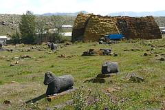 Aragat - Armenia