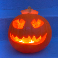 Funky pumpkins 1 HDR