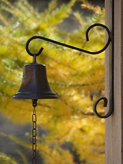 Bell and fall colors