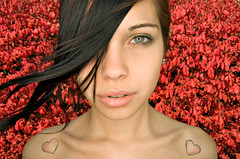 Rachel 42 (yospyn) Tags: pink red portrait woman face background flashphotography foliage ringflash redleaves alienbees abr800