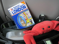 Laura & Claude in London (00) (chicgeekuk) Tags: red laura animal toy crab plush claw abroad stuffedanimal seafood claude crabs crustacean claws kishimoto travellingtoys travellingtoy laurakishimoto laurakishimotoca claudeabroad