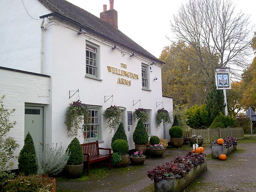 Wellington Arms