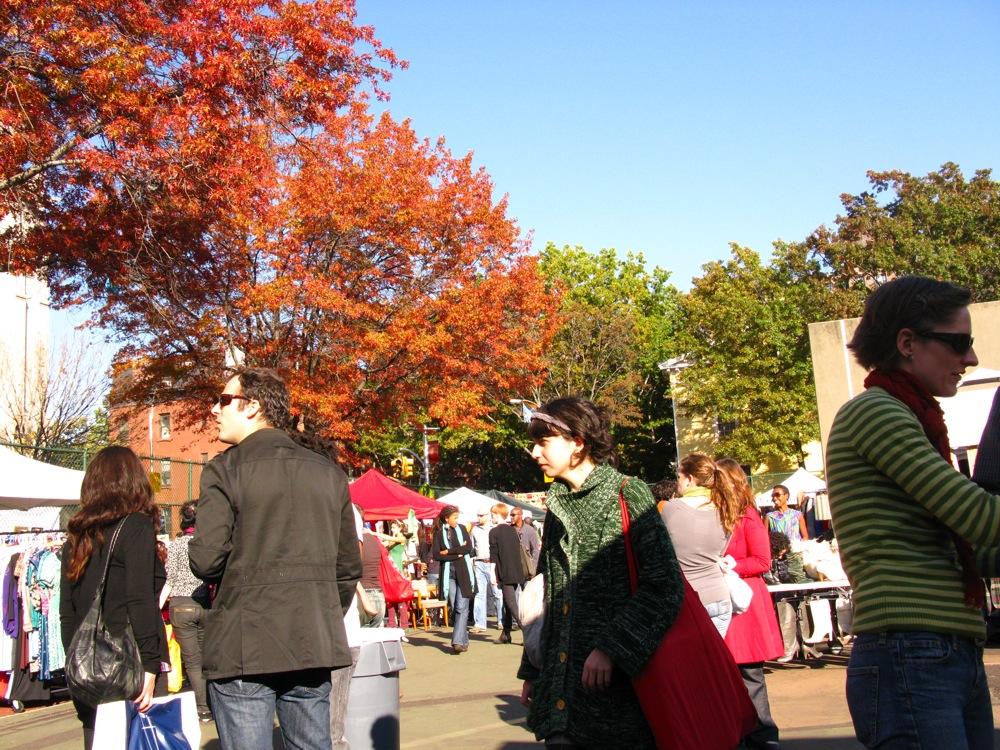 Fall Foliage 111608