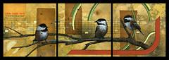 2 of 3 Still in the Green (Dennis Hayes IV) Tags: california 2 3 bird art painting 1 gallery michigan detroit chickadee kelly 7teen dennis hayes iv escondido distinction vivanco