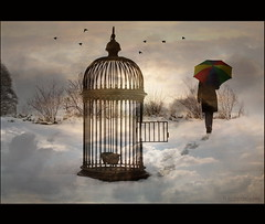 Empty Cage (h.koppdelaney) Tags: world sky inspiration snow art digital self creativity liberty freedom energy state symbol magic release dream free prison vision seven future translucent metaphor lucid kfig liberation consciousness psyche alchemy symbolism sins psychology archetype freiheit gefngnis fineartphotos memoriesbook transduality hourofthesoul novavitanewlife