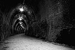 (Naomi Frost) Tags: old bw white black lights frost path bricks naomi disused walls traintunnel fernleightrack