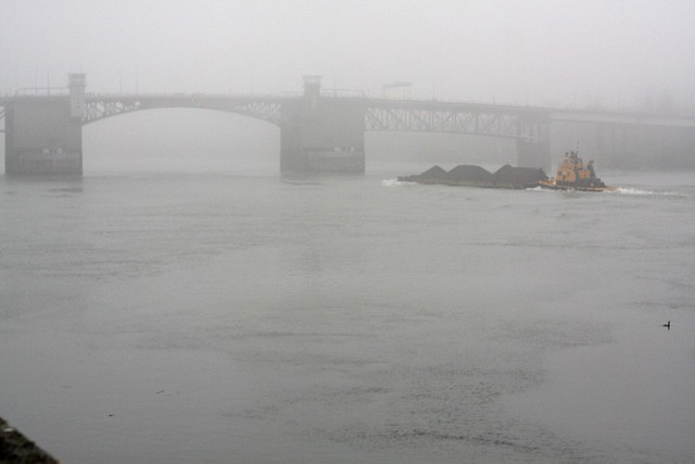 fog, morrison bridge