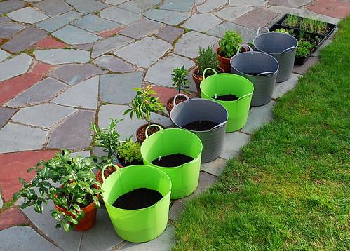 potato planters 4