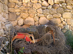 Abandoned motorbike (Tom in Ibiza) Tags: espaa abandoned spain europe mediterranean ibiza campo balearic 2011 abandonedvehicles