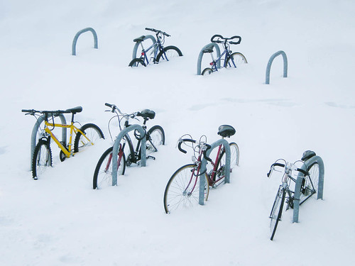 Arctic Bike Racks