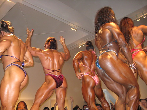 Ace Gallery Female Bodybuilders