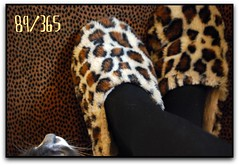 nosey cat (suesue2) Tags: me pillow smokey friday slippers animalprint suesue2 futab feetuptakeabreak mynoseycat
