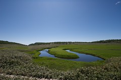雨竜沼湿原の池塘