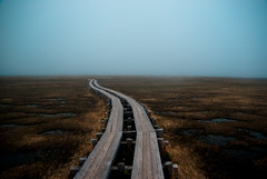 into the fog (takay) Tags: japan fog landscape marshland oze gunma beautifulscenery   treeway  ozegahara takay