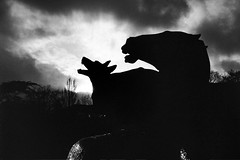 L'orage / The storm (marc do) Tags: street light sky blackandwhite bw horse dog chien sun storm black paris france blancoynegro water animals silhouette statue clouds cheval md wolf eau europe do noiretblanc streetphotogr