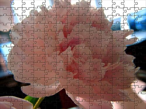 peony puzzle