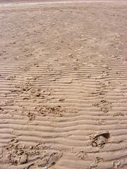 Ripples (Cieguilla) Tags: beach sand playa arena ripples ainsdale ondas