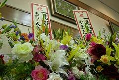 日本大眾演劇,一見劇團
