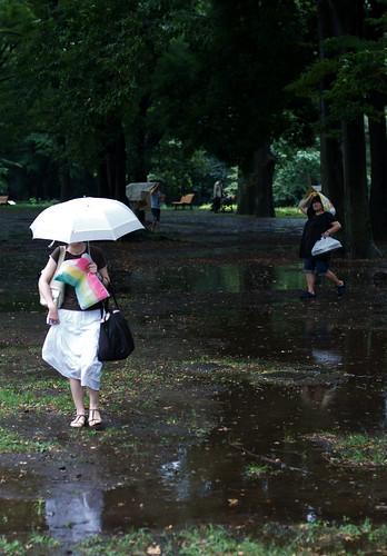 Rain in Yoyogi Park 05