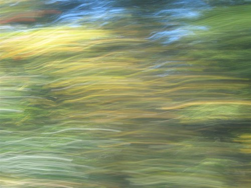 Abstract trees in motion