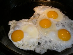 Three eggs = four yolks!