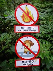禁止香菇進入