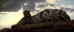 2001 panther