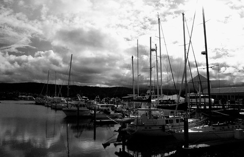 Sail Boats B and W