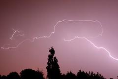 Lightning (AppleDave) Tags: sky storm tree night lightning flickrsbest goldstaraward