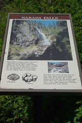 2008-07-31 Mt Ranier (12)