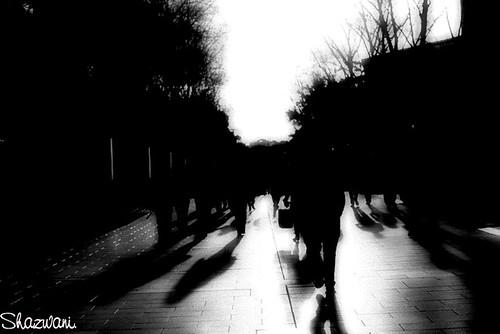shadows.
