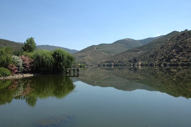 Reflexos no Douro