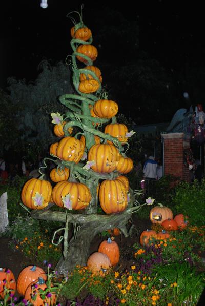 pumpkin_pryamid_1