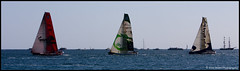 VOR 08/09 - Alicante (Alex Stoen) Tags: canon eos spain sailing wind alicante puma vor greendragon regata volvooceanrace canon70200f28l deltalloyd ilmostro canonef70200mmf28lisusm inportrace 40d volvoopen70 pumaoceanracing alexstoenphotography