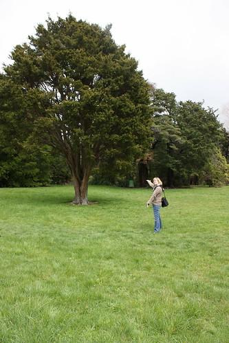 Harcourt Park