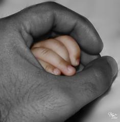 Lil Hand (ZiZLoSs) Tags: canon hands hand 2008 aziz abdulaziz عبدالعزيز 450d zizloss المنيع theunforgettablepictures 3aziz almanie theuniquephotographer