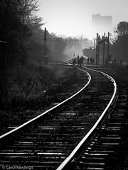 On the way (Carol-R) Tags: fogg