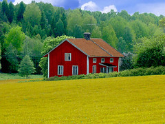 Abandoned wooden House in Swedish Landscape (Olof S) Tags: county old roof red wallpaper house building tree verde green abandoned nature field grass architecture farmhouse rural forest tile landscape photography landscapes countryside photo wooden nice interesting arquitectura cornfield nikon scenery europe view sweden decay schweden country natur picture natura swedish souvenir skog land environment nordic sverige scandinavia paysage landschaft wald foret paesaggio suede decadence suecia vieux srmland tegel landskap falurdfrg manzara shabby grd svezia szwecja fattoria falu sdermanland e3500 sdesflt decadenca rdfrg kornfeldt decadensa