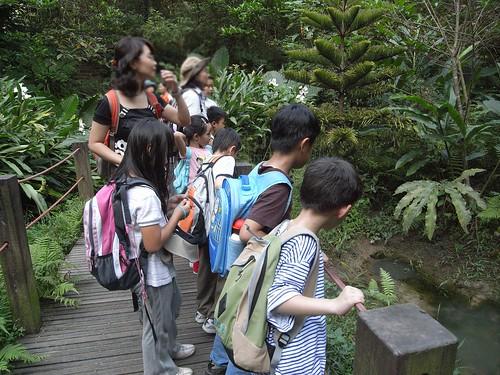 你拍攝的 52觀察生態池。