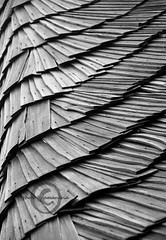 Nothing`s perfect... (amanaria) Tags: wood roof bw nikon regularity d80 aplusphoto thebestofday gnneniyisi