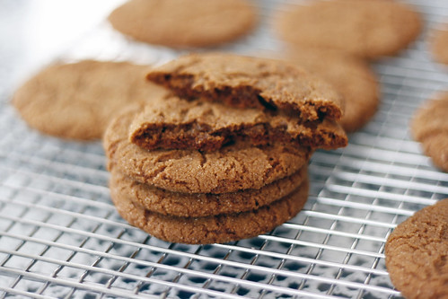 spicy ginger molasses cookies
