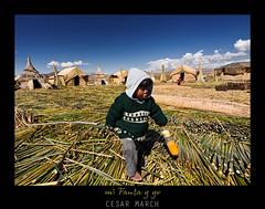 Mi Fanta y yo (cesarmarch) Tags: peru uros titicaca totora olympus e3 niño islas puno cabañas 714 cesarmarch