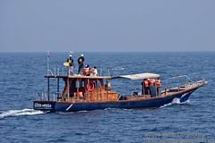 Mirissa Watersports & Whale