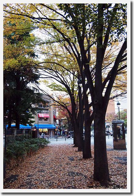 20101127_161430_横浜_開港広場