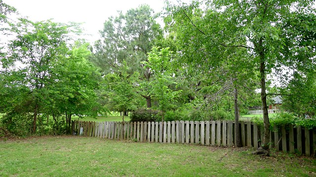 Cleared Privacy Fence