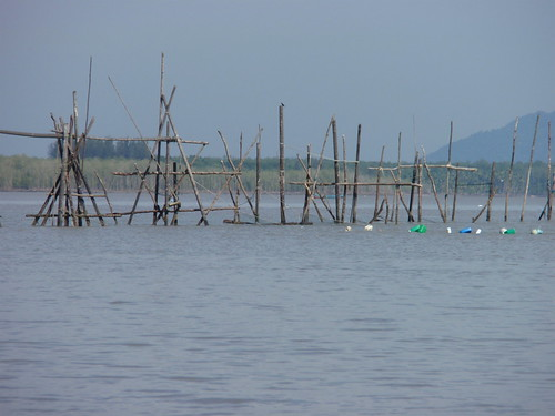 Fishing traps near Bako 2
